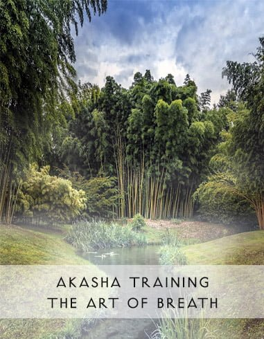 Akasha Workshop – The Art of Breath on February 22 and 23, 2019