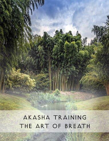 Akasha Workshop – The Art of Breath: 22./23. Februar 2019