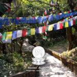 Nepal Basar – Laimer Hofflohmarkt 17th July