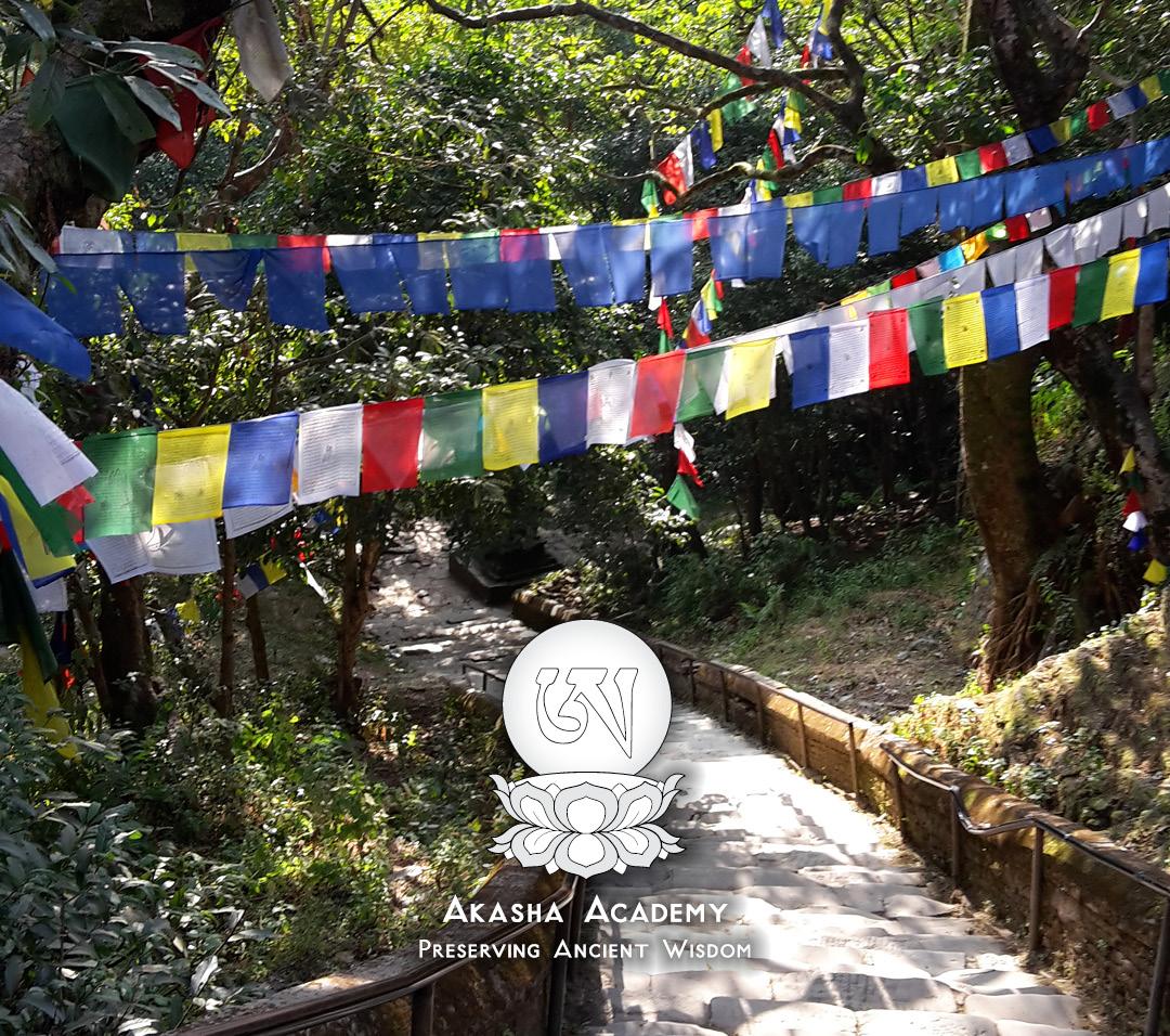 Nepal Basar – Laimer Hofflohmarkt 17. Juli
